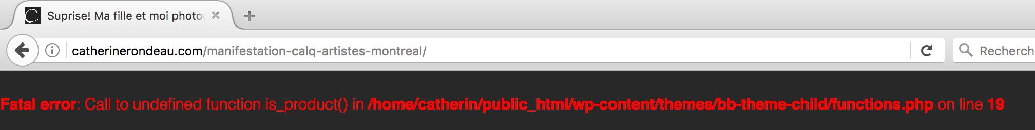 Screen-shot fatal error message
